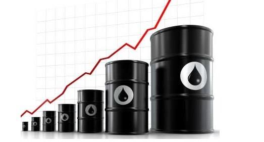 trading_petróleo