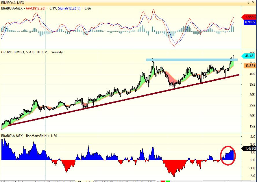 analisis_tecnico_grupo_bimbo