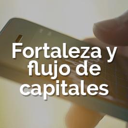 fortaleza y flujos de capitales