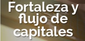 Fortaleza y Flujo de Capitales